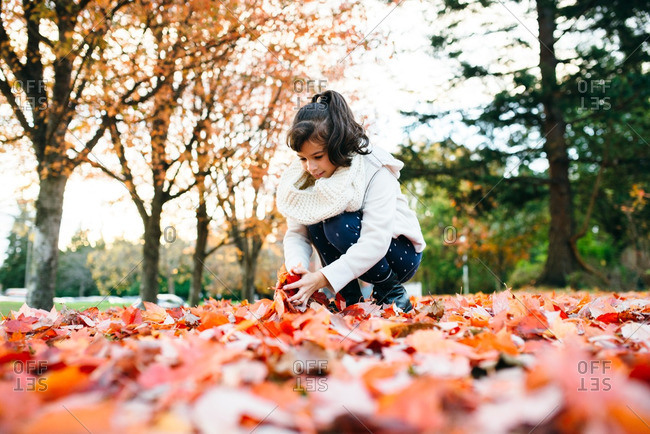 Girl scooping up fall leaves
