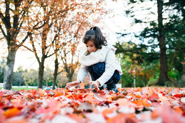 Girl scooping up autumn leaves