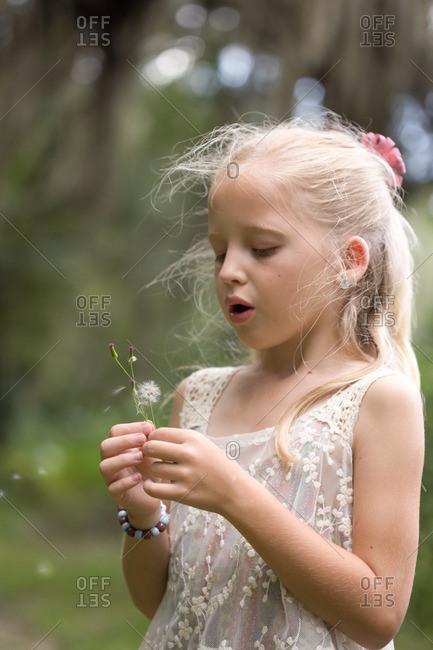 Little girl blowing seeds from a dandelion flower