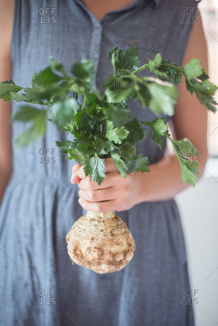 Woman holding a celeriac root