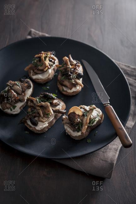 Rustic organic mixed mushroom toasts