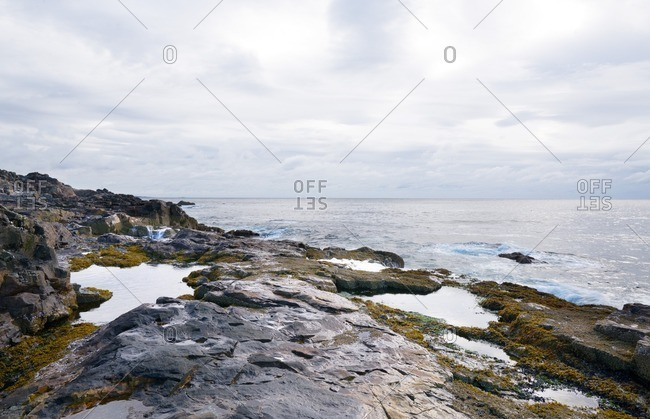 A rocky shoreline in Maine