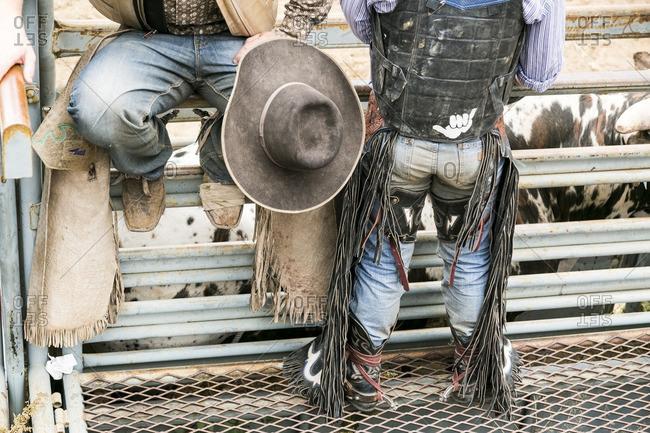 Legs of two people in rodeo gear