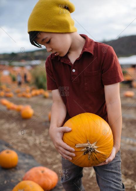 Boy holding a pumpkin at the pumpkin patch