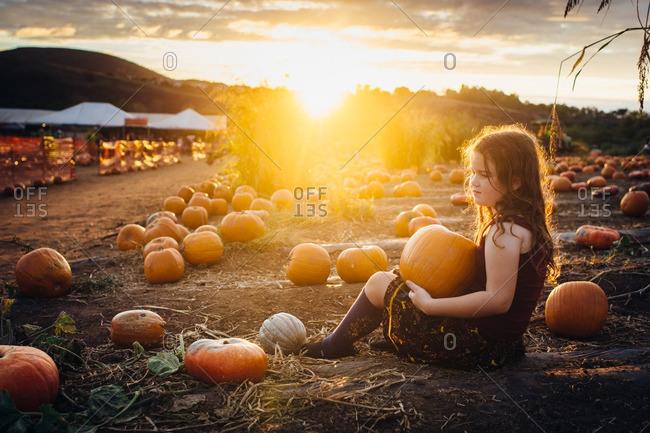 Girl holding a pumpkin sitting in the pumpkin patch