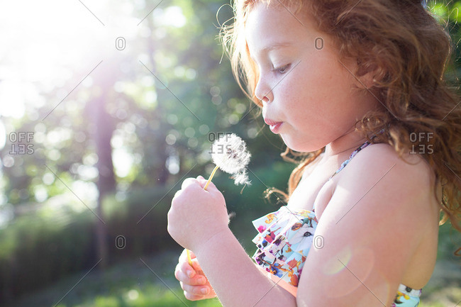 Little girl holding dandelion and blowing the seeds