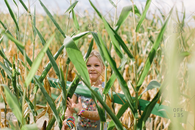 Portrait of a young girl standing behind corn in a corn maze