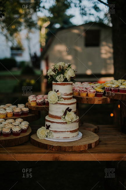 Cake and cupcakes at outdoor wedding