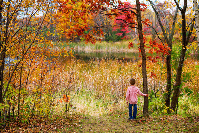 Young boy hiking through woods in the autumn