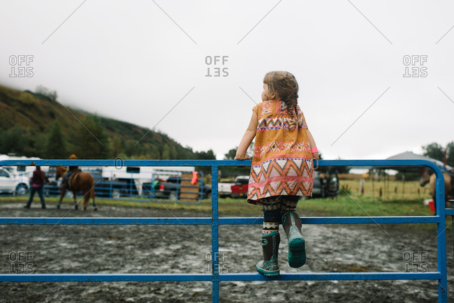 Girl watching rodeo scene on fence