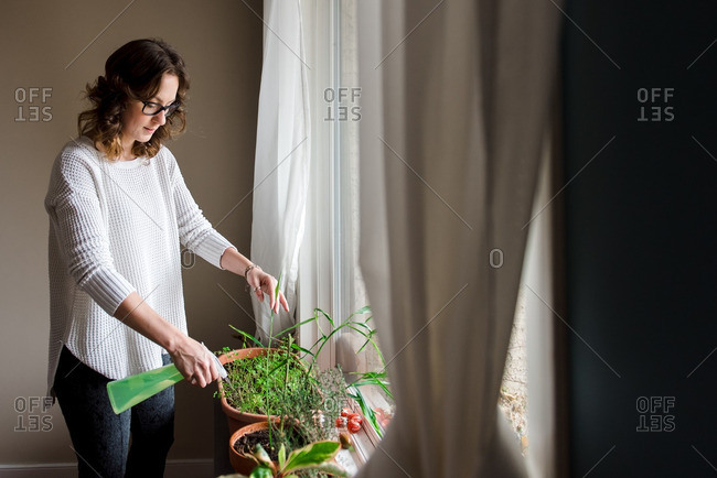 Woman watering herbs and plants by a window