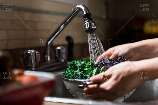 Close up of woman washing kale in her sink