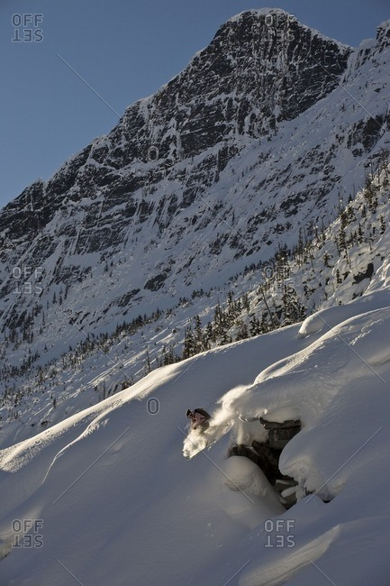A male free skier backcountry skiing in Roger's Pass, Glacier National Park, British Columbia, Canada