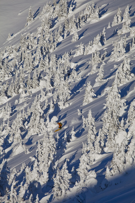 A man backcountry skiing through snow ghosts in the Kicking Horse Backcountry, Golden, British Columbia, Canada
