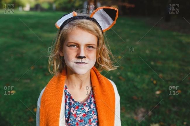 Fox Face Stock Photos Offset - Fox-makeup