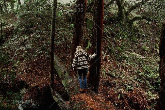 Woman crossing a fallen log in a forest