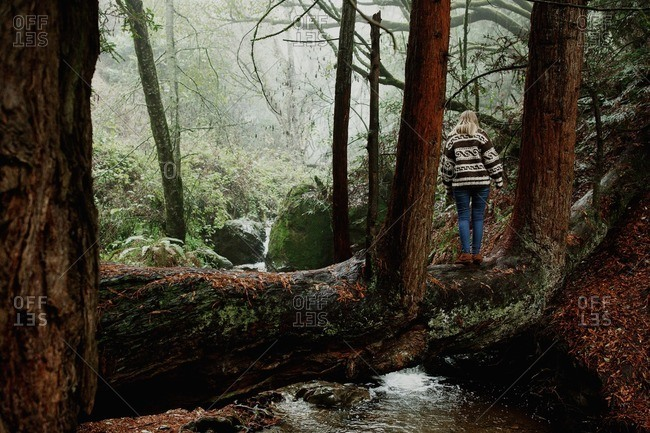Woman standing on a tree trunk crossing a creek