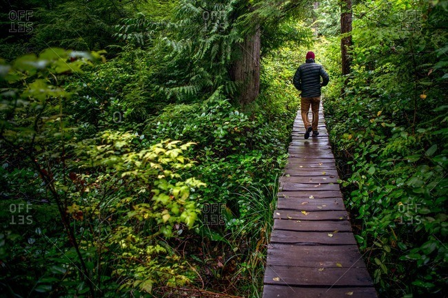 A man walks the wooden path to Cape Flattery.