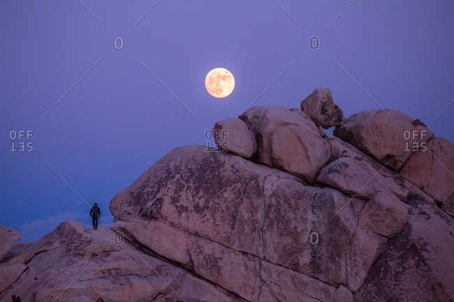 A man walking across the granite domes of Joshua Tree National Park under the full moon.