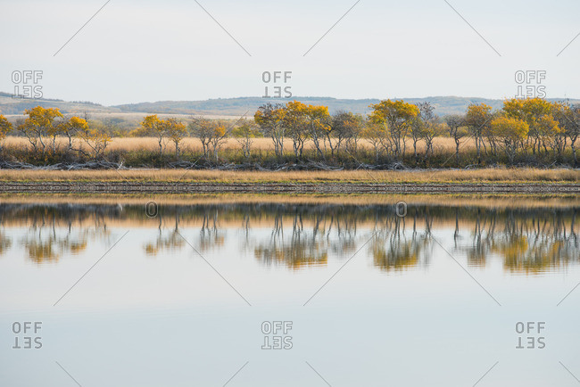 Deciduous trees in fall color reflected in a mountain lake