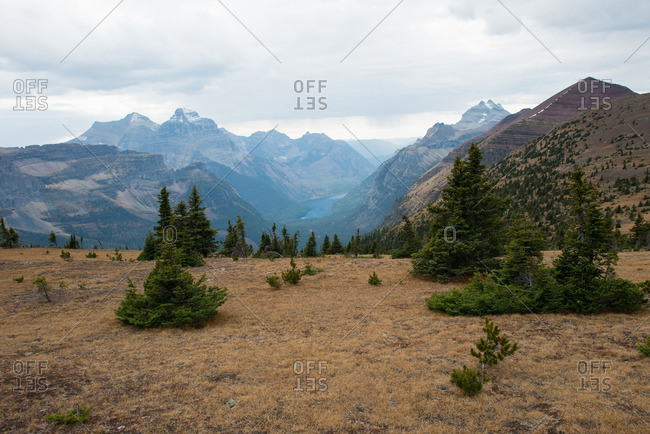 Scenic view of mountain range from a meadow
