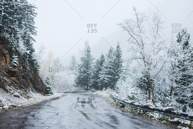 Mountain road through a snowy forest