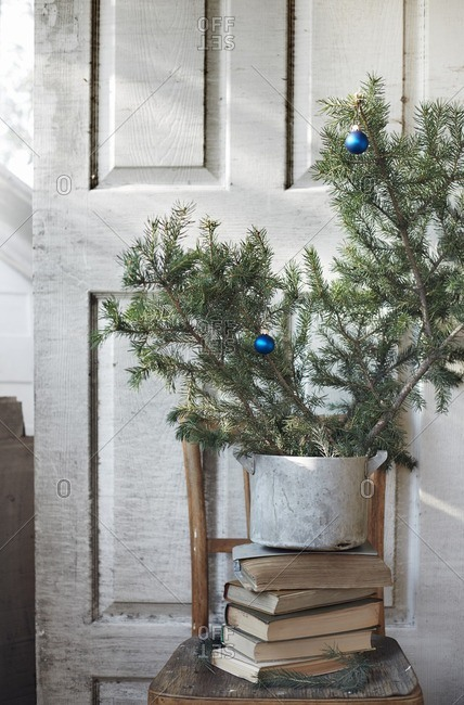 Christmas tree at abandoned weekend house