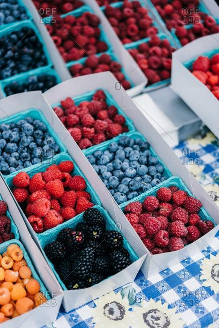 Berry varieties in cartons