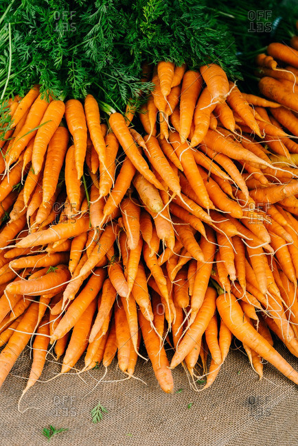 A pile of fresh raw carrots