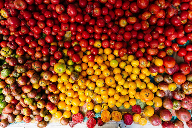 A variety of tomatoes in pile