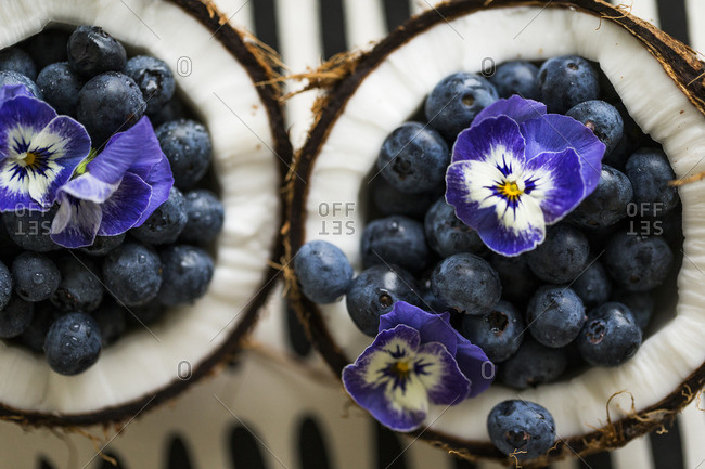 Two coconut halves filled with blueberries and pansy flowers