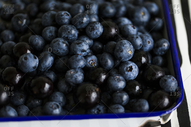 Enamel tray filled with fresh blueberries