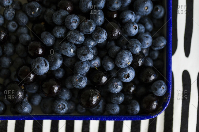 Corner of an enamel tray filled with fresh blueberries