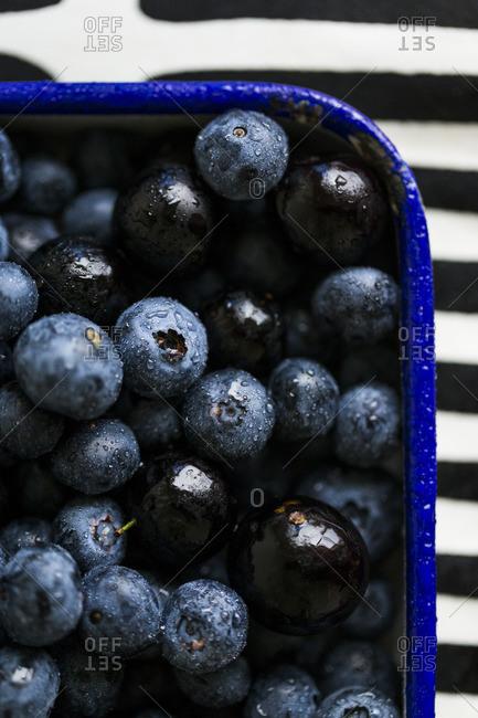 Fresh blueberries in an enamel serving tray