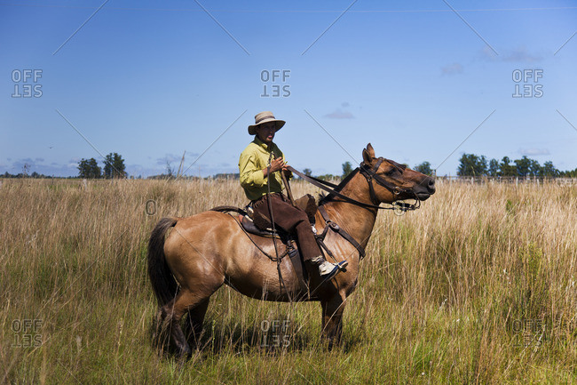 Corrientes, Argentina - February 24, 2015: Gaucho riding a brown horse in a field