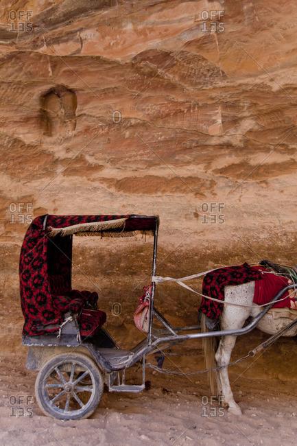 Horse drawn carriage in Petra, Jordan