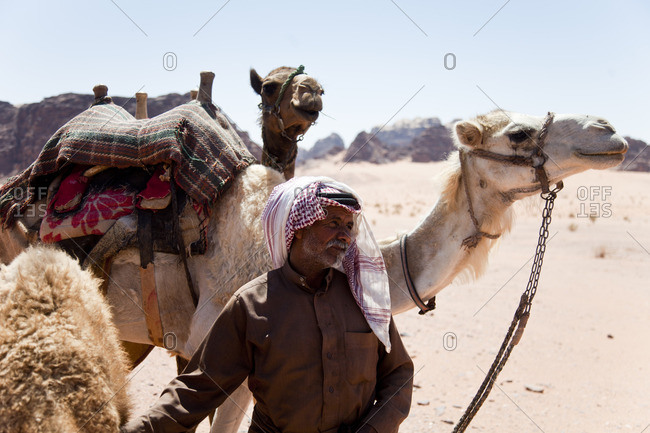 Wadi Rum, Jordan - June 1, 2015: Man walking with camels in the Wadi Rum desert