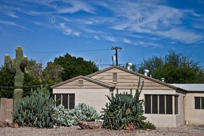 Tan house with cactuses in the front yard, Phoenix, Arizona