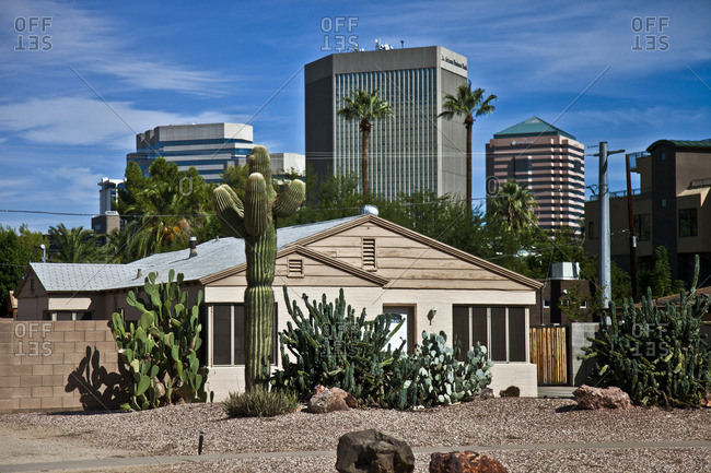 Tan house with cactuses and city buildings in the background, Phoenix, Arizona