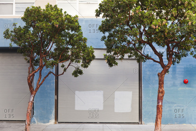 Trees in front of a garage in San Francisco, California