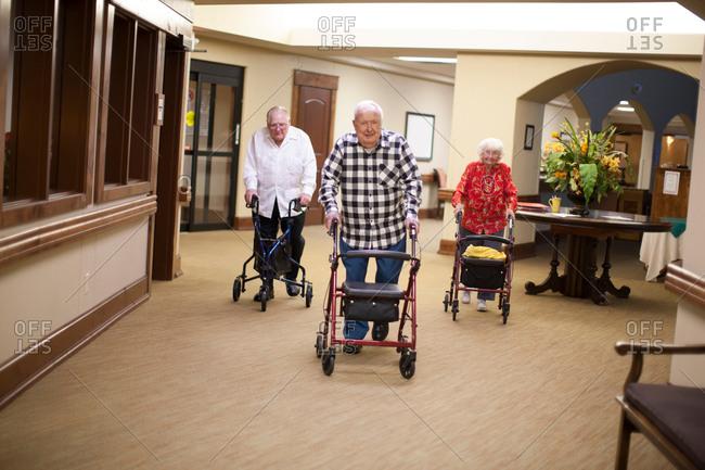 Three senior adults walking indoors with walking frames
