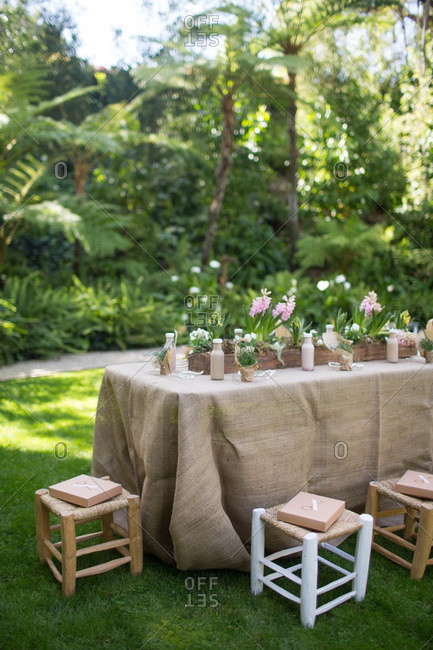 Table set in tropical lawn