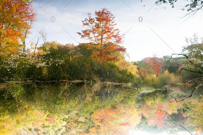 An idyllic lake in fall