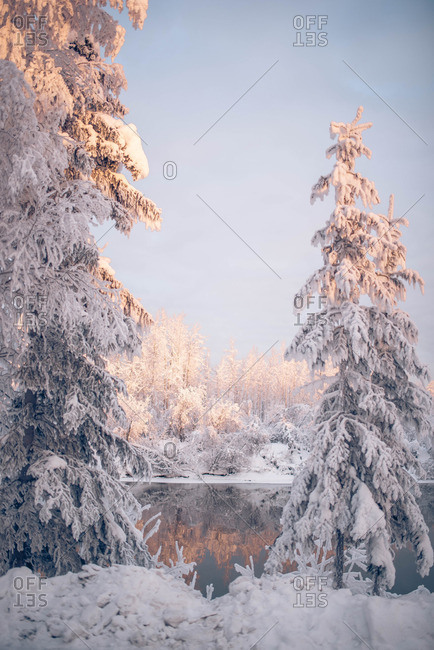 Still lake in snowy countryside