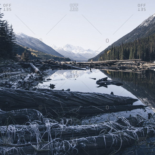 Logs along the shore of a lake with distant mountain range reflected in the water