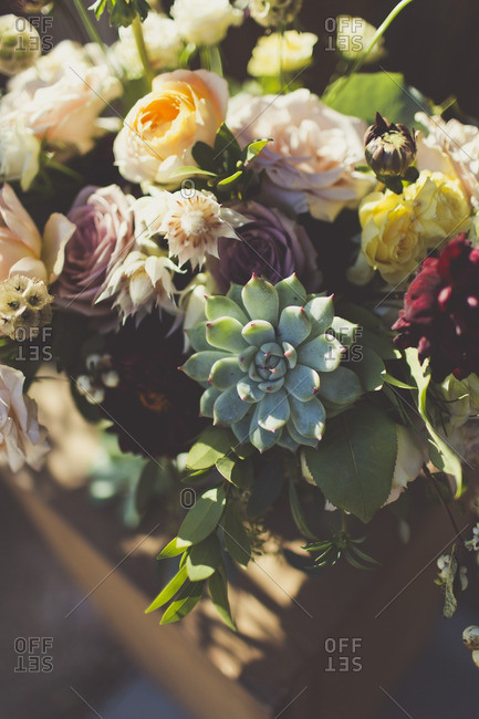 Close-up of bouquet with roses and succulents