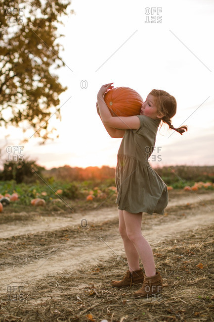 Girl struggling to carry a heavy pumpkin at the pumpkin patch