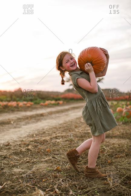 Girl carrying a heavy pumpkin at the pumpkin patch