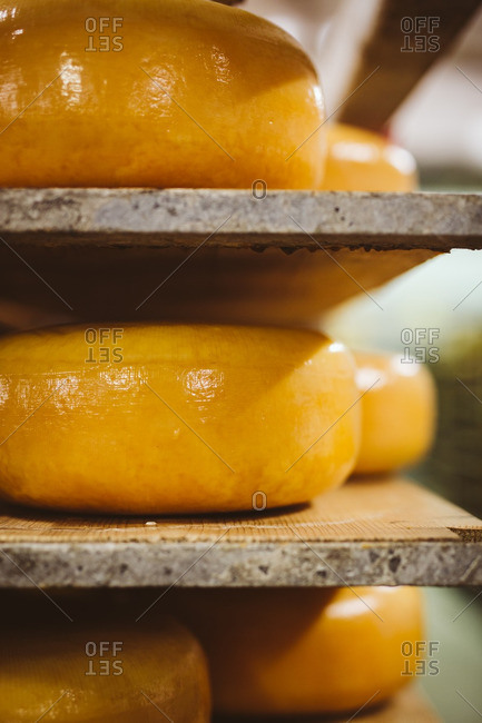 Close-up of aging wheels of cheese on shelf
