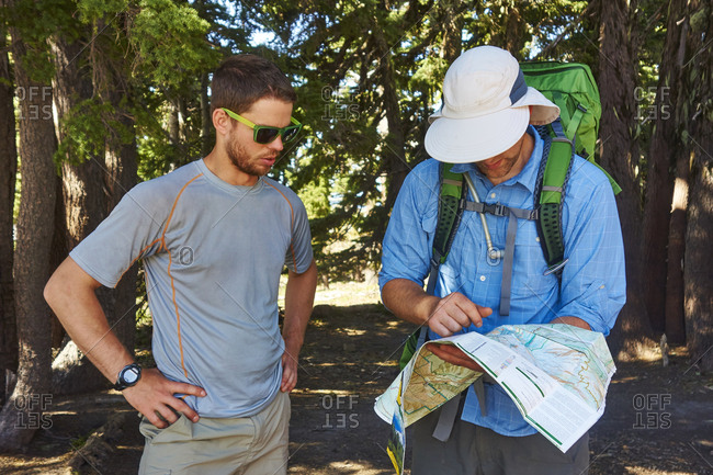 Hikers checking the trail map. Timberline Trail, Mt Hood, OR